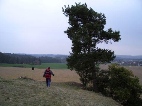na Ptáčovském kopečku v roce 2007