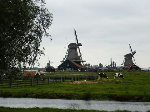 mlýny v Zaanse Schans