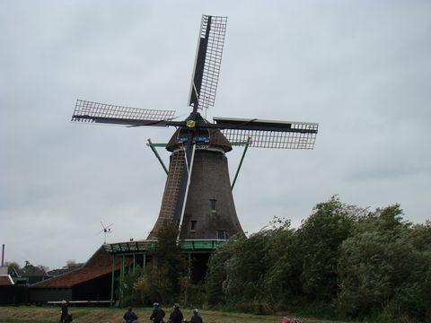 jeden z mlýnů v Zaanse Schans