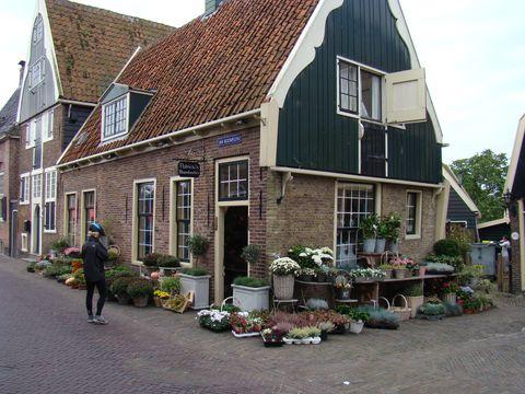 i v malé obci je velká nabídka květin