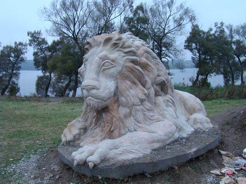 Lev hledí na Moravu
