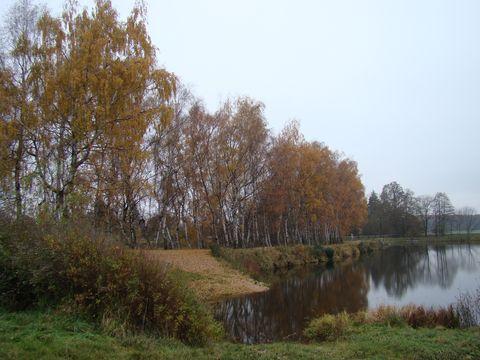 hráz Rostýnského rybníka