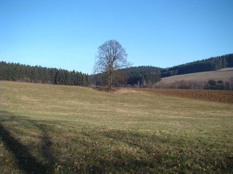údolím Jamenského potoka vede modrá TZ z Jihlavy do Polné