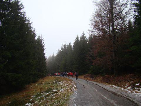 cesta z Javořice