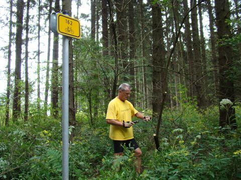 odstranění náletových dřevin na Petrovickém kopci
