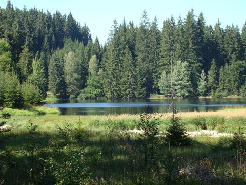 rybníkem Kapeník protéká Luznice