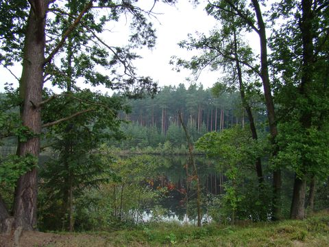 Kamenný rybník