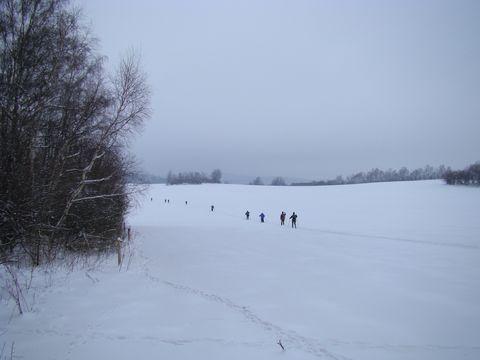 zvířecí i lidské stopy ve sněhu