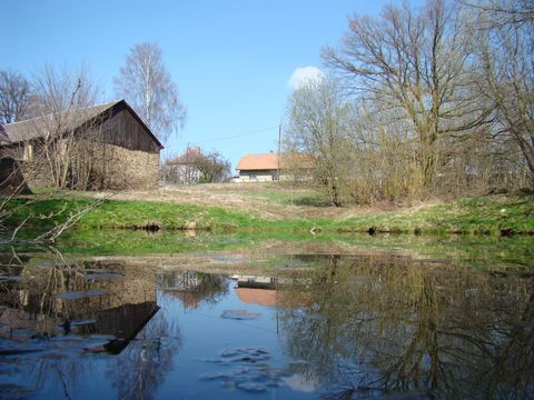 rybníček u zbytků tvrze ve Speřicích