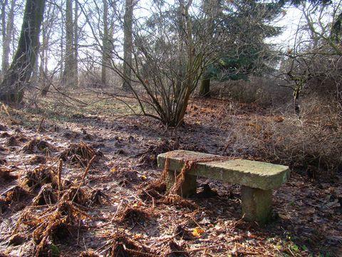 odpočívající zahrada