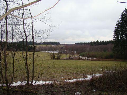 typická krajina na Batelovsku