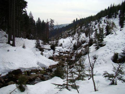 údolí Medvědího potoka