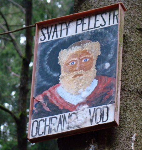 Svatý Pelestr