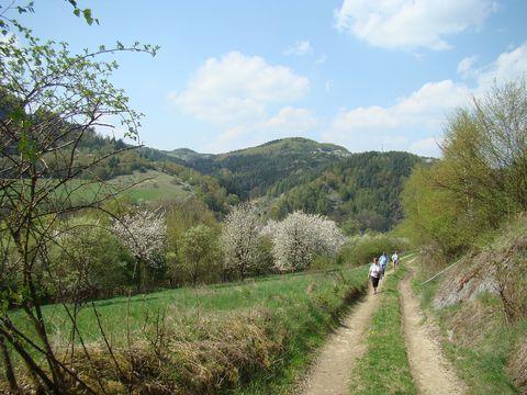 cesta údolím Svratky