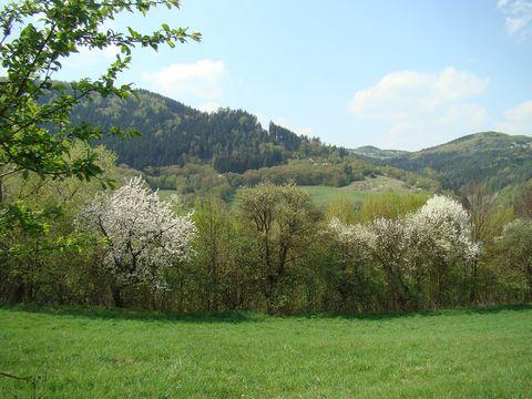 trochu námahy v členitém terénu vyvažovaly úchvatné výhledy na kvetoucí krajinu