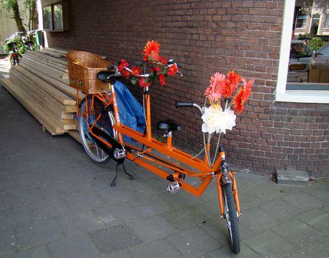 Holanďani mají svá kola rádi