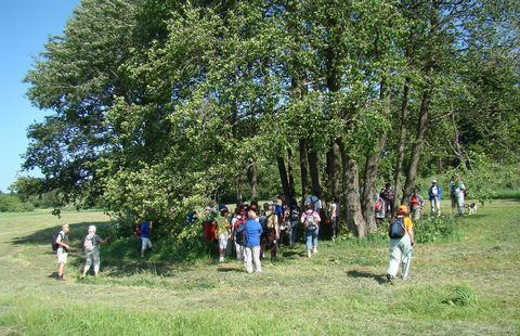 turisté se scházejí k prameni Jihlavy