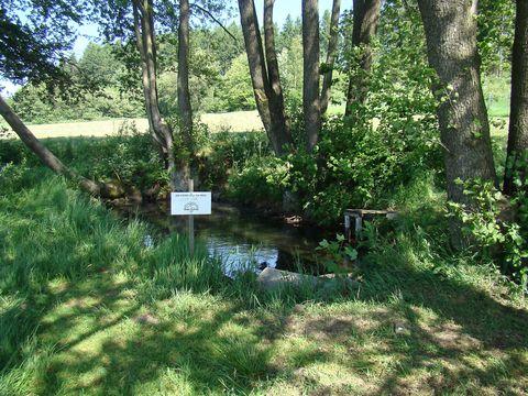 Zde počíná svůj tok řeka Jihlava - je psáno na cedulce, kterou sem umístila Česká televize při natáčení pořadu o pramenech řek