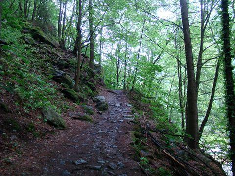 Riegrova stezka nad Jizerou