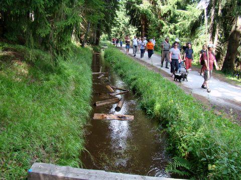 ukázkové plavení dřeva na Jeleních Vrších