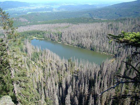 pohled na Plešné jezero z Jezerní stěny