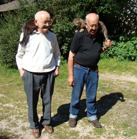 Jiří a Daniel Reynkovi milují kočky