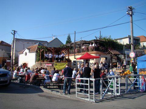Vinařské náměstí ve Valticích
