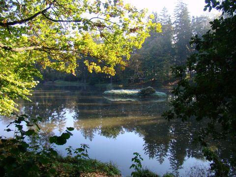 rybník v zámeckém parku