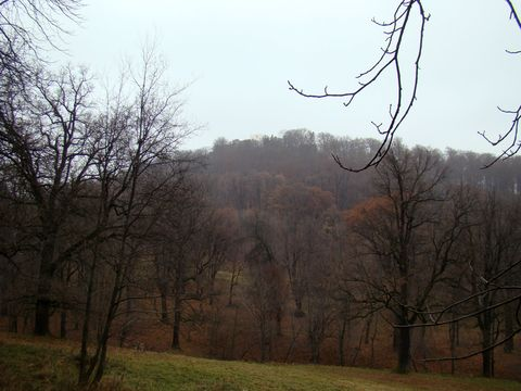 na kopci jsou zříceniny hradu Hukvaldy