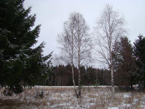u Kameniček