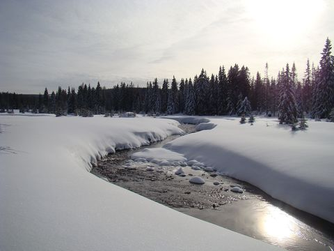 Roklanský potok v odpoledním slunci