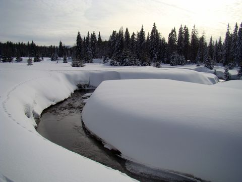 partie kolem Roklanského potoka považujeme za nejkouzelnější
