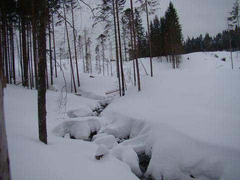 cestou k jezeru Laka