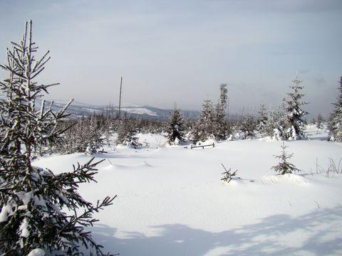 výhled ze svahu Černé hory