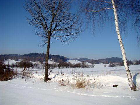 krajina u Nového Rychnova