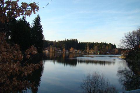 Pávovský rybník I.