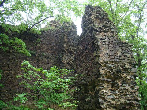 zřícenina hradu Netřeb