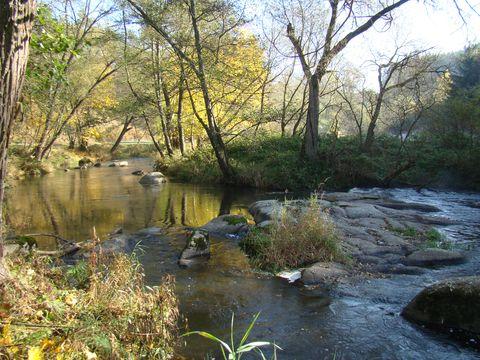 řeka Olava v Nesměřském údolí