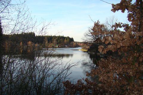 Pávovský rybník II