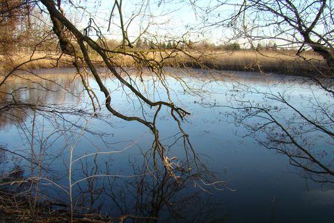 rybník blízko Bukovna I