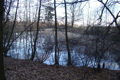 menąí rybník blízko Bukovna