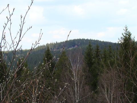 z vyhlídky na Přední skále je vidět lyzařská chata u sjezdovky pod vrcholem Čeřínku