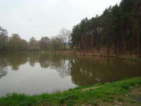 rybník Herout