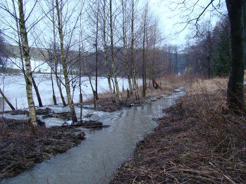 rybník se vylévá z břehů