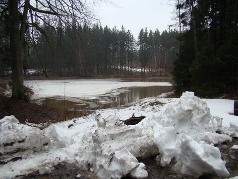 Ochozský rybník