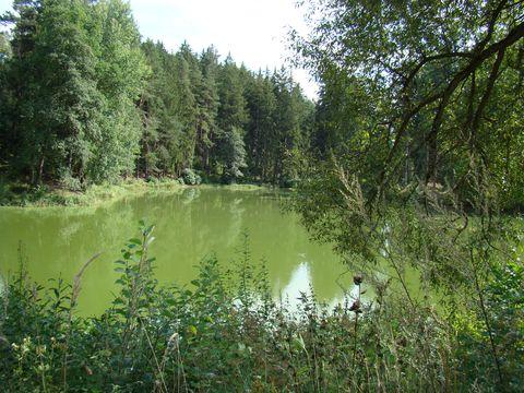 rybník Sebevrah