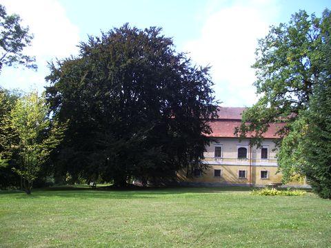 zámecký park v Chotěbori