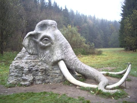 mamut pod Rozątípenou skálou