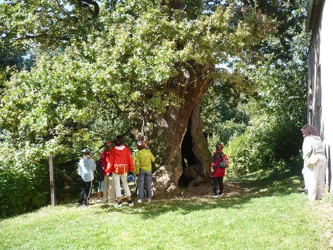 v úzasu jsme stáli před mohutným stromem