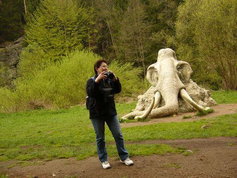 já a mamut